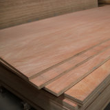 1220*2440mm Okoume Face with Commercial Ploywood for Indoor Usage in Linyi
