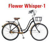 Tdjdc 2017 Ladies New Outdoor Bike No Chain Bicycle