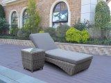 Rattan Patio Home Hotel Office Buffalo Lounge Combination Outdoor Sofa Set (J695)