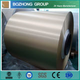 2124 New Color Coated Aluminium Coil