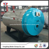 China Gold Supplier Fully Automatic Gas Fired Boiler and Waste Oil Types Gas Heaters