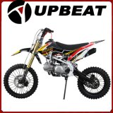 Upbeat Dirt Bike New Model Crf110 Pit Bike