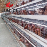 Used Poultry Battery Cages Chicken Cage for Sale Pakistan