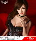 Lifelike Latest Sex Doll for Men/Vagina Sex Toy