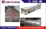Commericial Vegetable and Fruit Carrot Ginger Potato Air Bubble Washing Machine