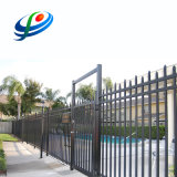 Hot Sale Aluminium Fence Spear Top Panel for Swimming Pool and Garden Double Rails Fence