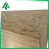 Cheap OSB Board/Oriented Strand Board for Furniture 9mm 11mm 18mm