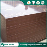Hardwood Core Phenolic Building Material Film Faced Plywood