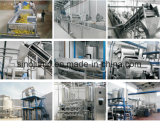 Typical Mango Pulp Puree Production Machines From Washing Till Packing