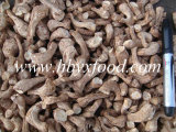 Wholesale Price Premium Spawn Shiitake Leg Dried Healthy Food