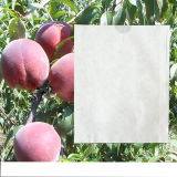Good Breathability Waterproof Fruit Paper Growing Protective Bag for Mango Popular in Malaysia Vietnam