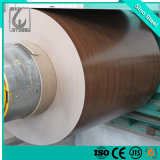 Colorful Prepainted Galvanized Steel Coil for Construction Industry