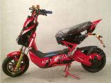 1000W60V Dirt Bike Electric Racing Motorcycle (EM-009)