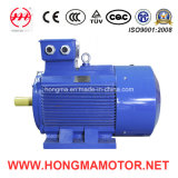 Ie3 Cast Iron Series Three Phase Asynchronous Induction High Efficiency Electric Motor (3HMI 315M 2 132)