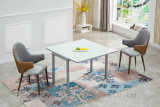 Modern Factory Extension White Glass Sliver Metal Dining Table Set Furniture