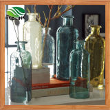 Glass Bottle Flower Vase for Home Decoration