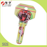 Mini 3D Animal Painted Color Remote Key Blanks for Locksmith