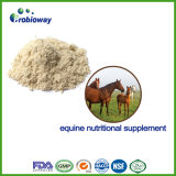 Fast-Acting Veterinary Horse Nutritional Supplement Gut Health