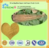 Pure Natural Burdock Root Extract 40% Arctiin