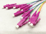 Fiber Optic LC 12core Ribbon Colorful Pigtail Om4 Purple Connector