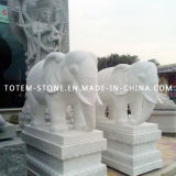 Granite Stone Carving Animal Statue, White Elephant Sculpture for Garden