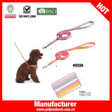 China Wholesale Dog Leash Wholesale (YL83569)