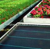 Black Weed Control Mat with Green Line