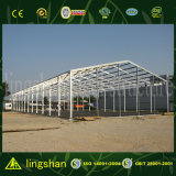 Light/Heavy Steel Building Materials Construction with Good Market