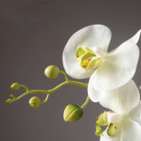 Butterfly Orchid Artificial Flower, Artificial Flower, White Butterfly Fower for Home Decoration, Real Touch 8 Heads Butterfly Orchid