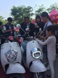 Factory Wholesale Cheap Electric Motorcycle for Sale