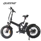 Queene/Wholesale Agile Cheap E-Bike 350W Electric Bike Green Power 48V Moped