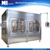 Cost-Saving Automatic Mineral Water Bottling Machine