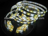 DC12V/24V 72LEDs/M RGBW Rgbww LED Strip Light