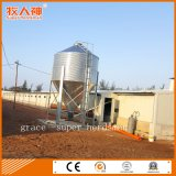 Chicken Farm Automatic Poultry Equipment with Free Poultry Shed Design