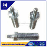 OEM/ODM Hex Bolt with Thread Rod