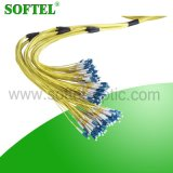 144c Bunchy Branch Fiber Optic Pigtail