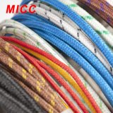 Micc High Quality PVC/Teflon Thermocouple Wire Thermocoupole Heating Wire