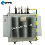 11-220 Kv Power Transformer and Distribution Transformer with Oil Type and Dry Type