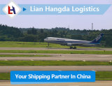Air Freight Air Cargo Shipping Low Rate with DDP Service Door to Door From China to Czech Republic