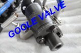 One Piece Body Flanged and Threaded Dbb Ball Valve