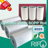 Eco Friendly Sensitive Thermal BOPP Synthesis Paper with FDA Certified