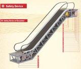 SANYO 0.65m/s speed outdoor escalator and moving walks