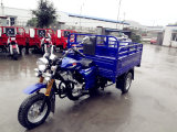 Best New Three Wheel Motorcycle Beer Bike Manufacturer