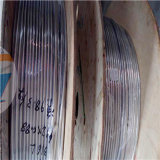 AISI Soft Bright Annealed 304 Steel Pipe Stainless Steel Coil Tube with Good Price