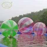 Inflatable Ball Water Ball Water Walking Ball for Cheapest Price (FLWB)