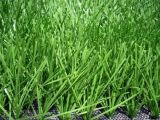 Artificial Grass for Football Field and Landscape