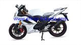 200cc Racing Motorcycle/Sport Motorcycle (SP200RC-3)