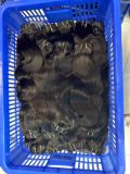 100 Original Brazilian Human Hair Bundle, Virgin Human Hair From Very Young Girl, Prices for Brazilian Hair