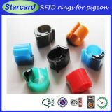 Much Better Price Birds Tracking RFID Ring