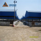Long Span Prefab Frame Metal Galvanized Steel Structure Sheep/Pig Shed House